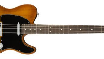 Fender American Performer Telecaster in Honeyburst